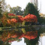 Altweibersommer im Burgund (Canal du Centre)