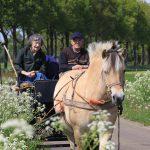 Ein Sonntag auf dem Land (Provinz Drenthe)