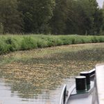 Herbststimmung auf dem Canal latéral à la Loire