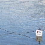 Weser-Hochwasser bei Minden