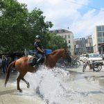 Berittene Polizei in Hannover