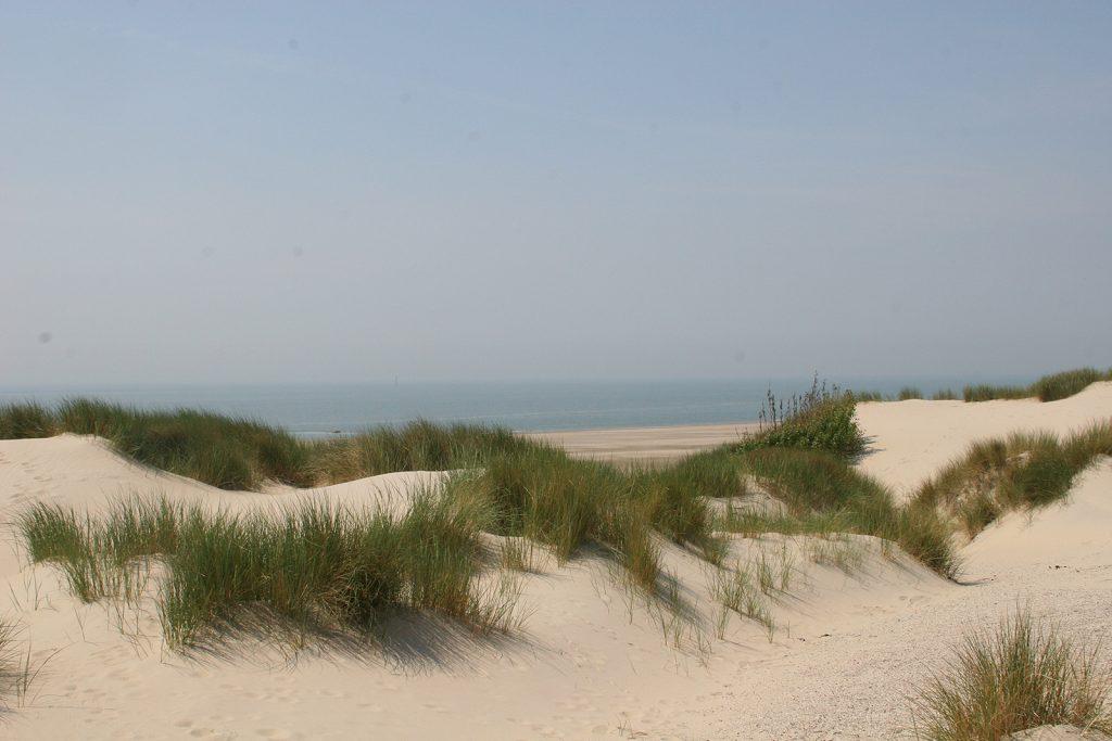 Dünenlandschaft auf der Insel Schouwen-Duiveland