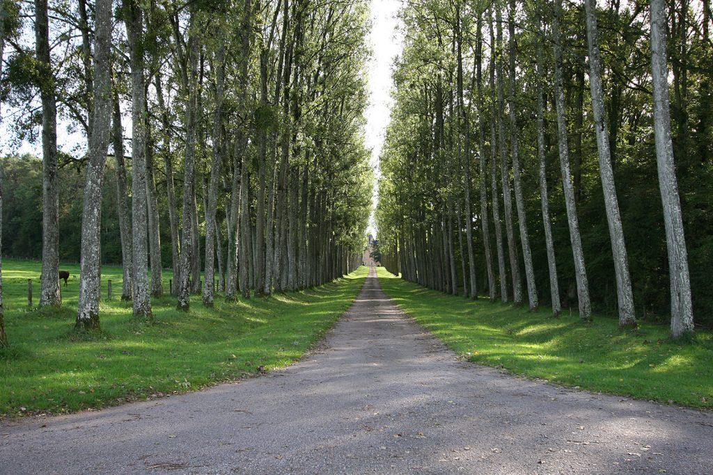 Zufahrt zum Château Tremblay
