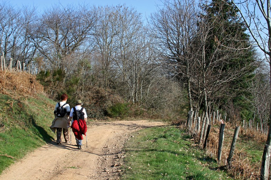 Wandern im einsamen Roannais