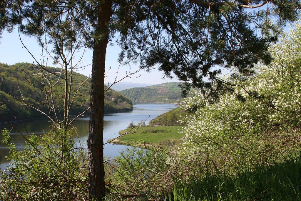 Loirelandschaft oberhalb Roanne