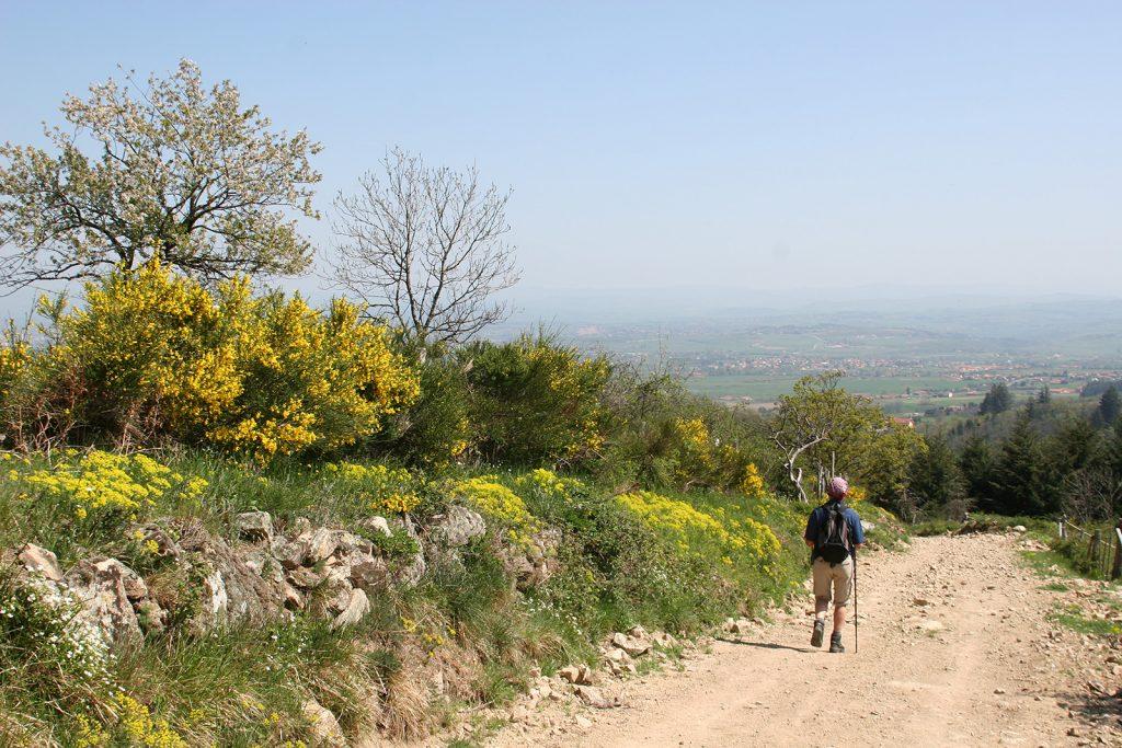 Wandern bei Roanne