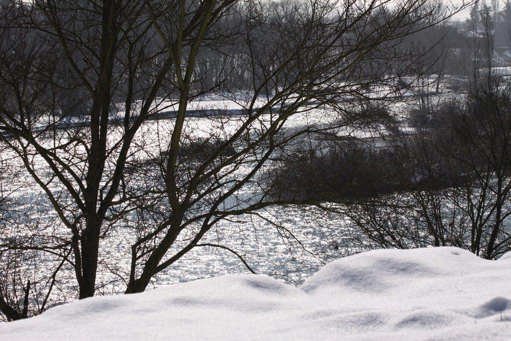 Die Loire im Winterkleid