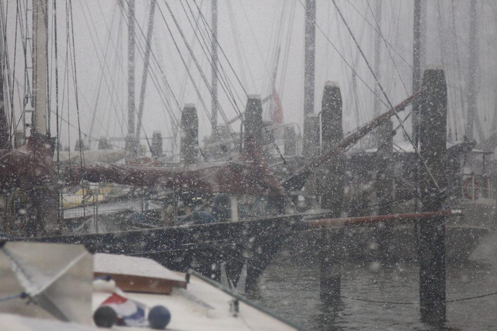 Museumswetter im global erwärmten Rotterdam