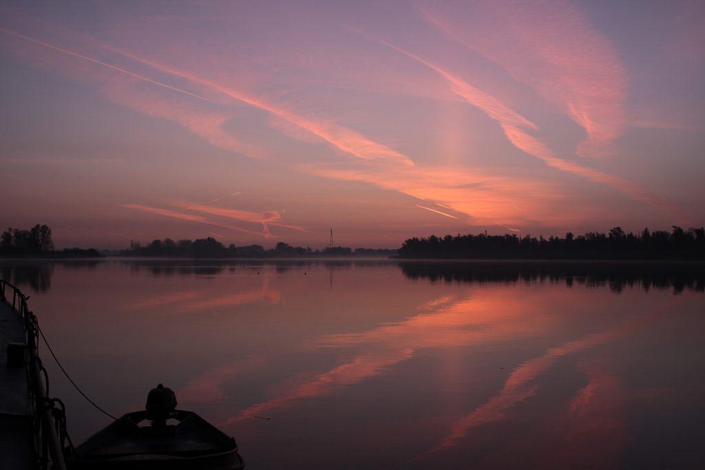 Ein neuer Tag dämmert im Biesbosch herauf