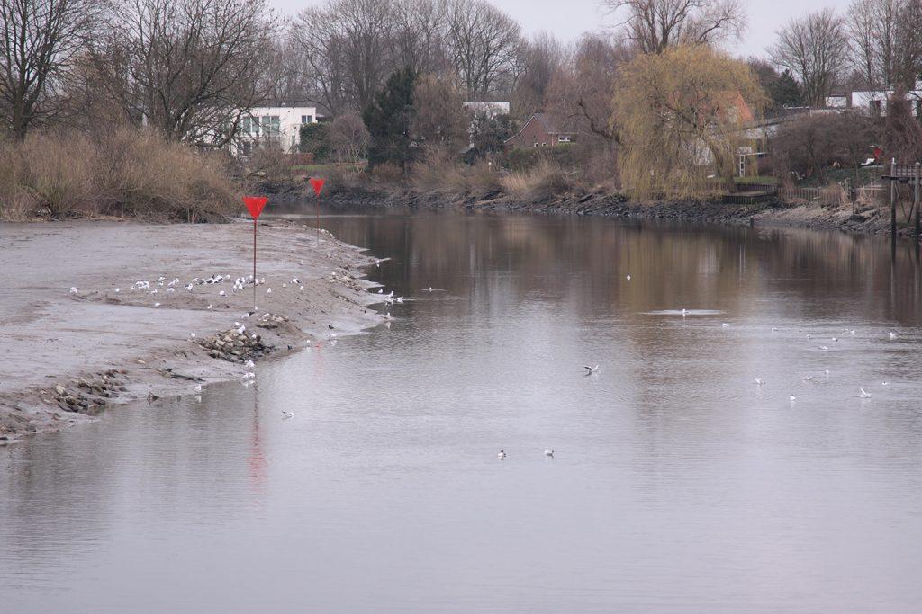 Die Hollandse Ijssel bei Niedrigwasser