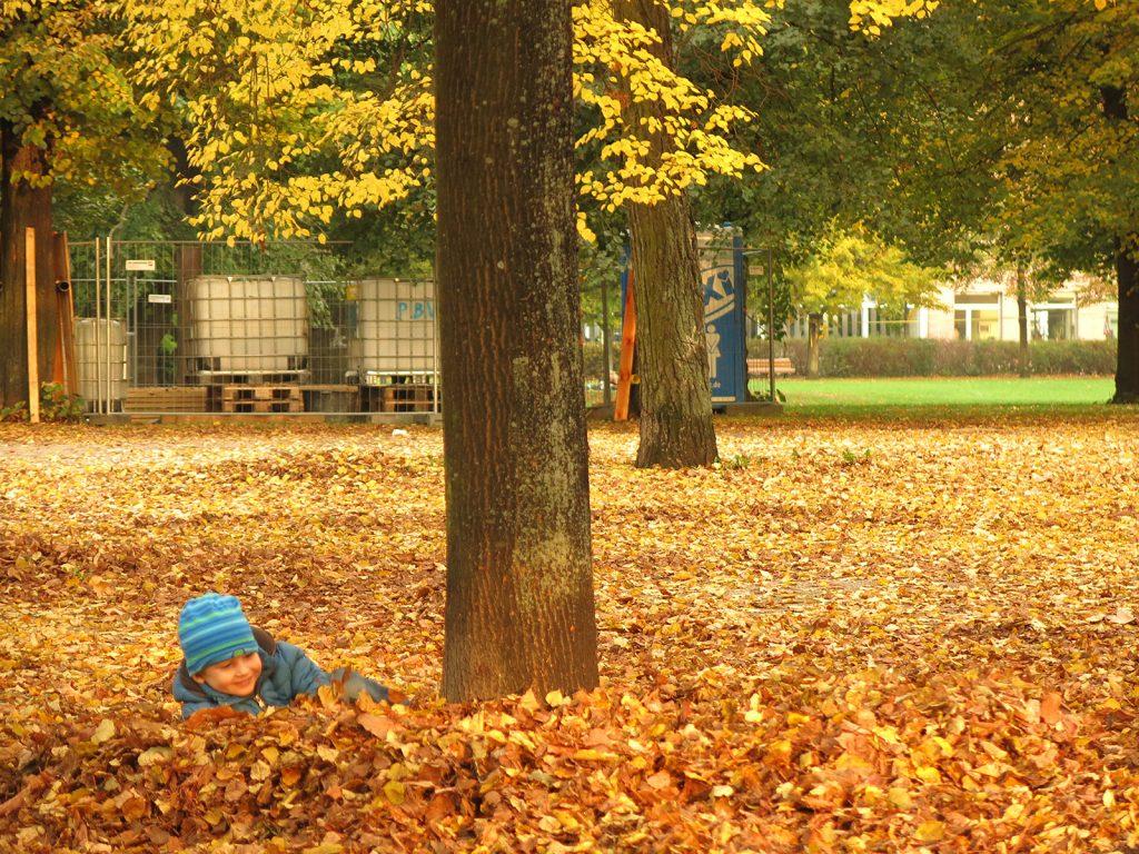 Herbst in Potsdam
