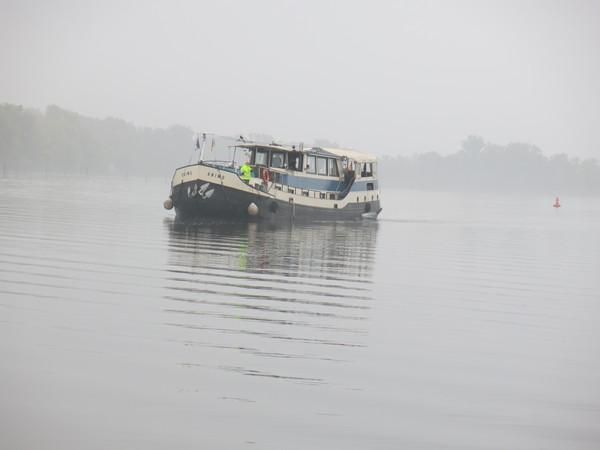 Wie ein Geisterschiff im Nebel – die «MS Animo»