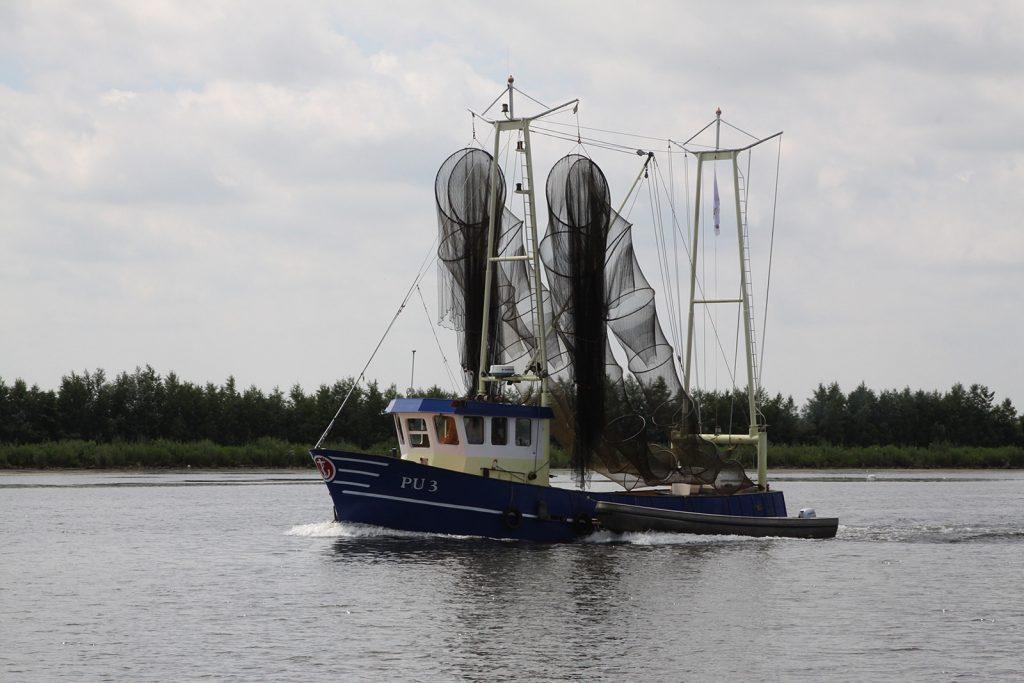 Ein Nordsee-Krabbenfischer